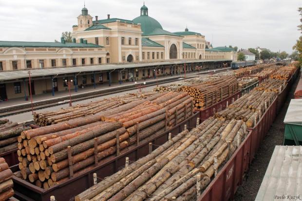 ліс на експорт