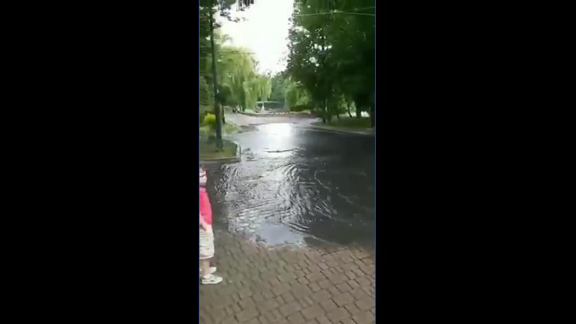 """У франківському парку прорвала каналізація – нечистоти стекли в """"лебедине озеро"""" 2"""