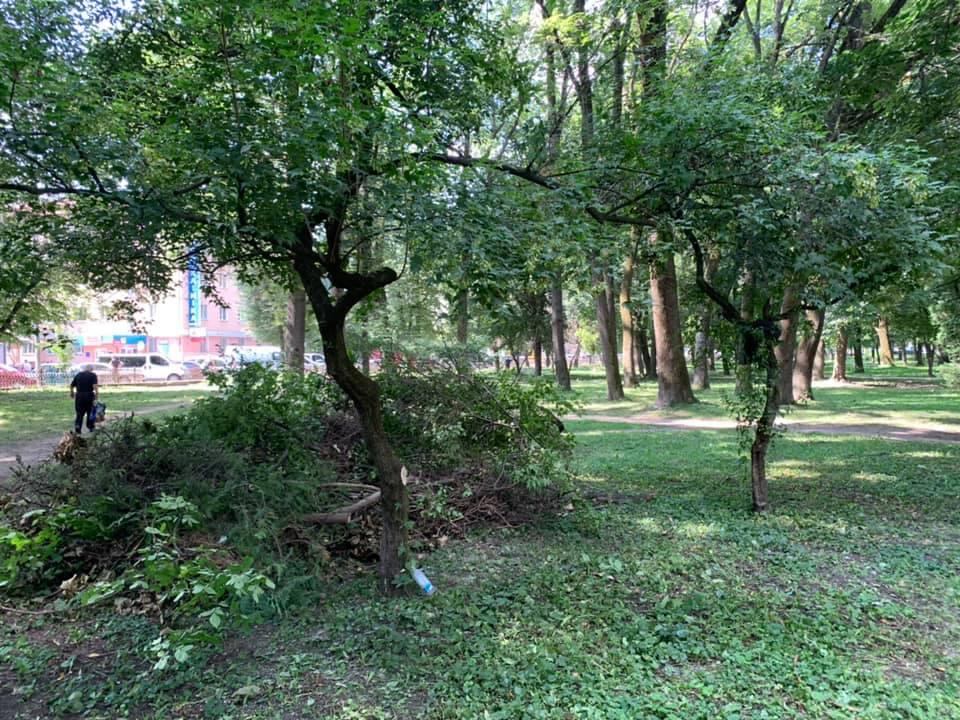 У парку Воїнів-інтернаціоналістів почали наводити лад 6