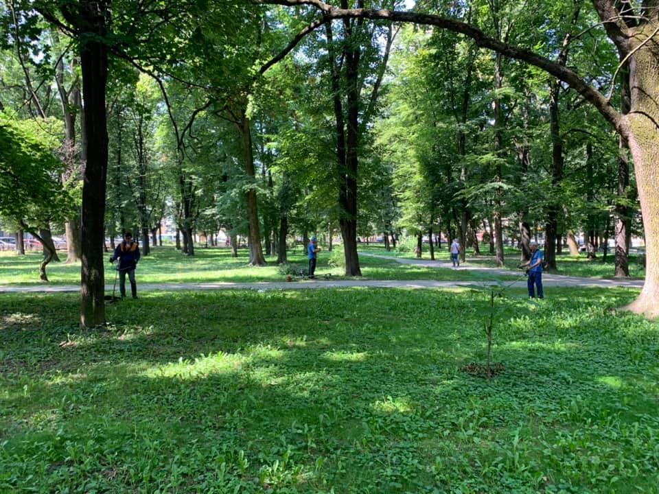 У парку Воїнів-інтернаціоналістів почали наводити лад 10