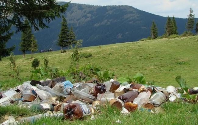 Розробили додаток, що допоможе почистити від сміття Карпати 1