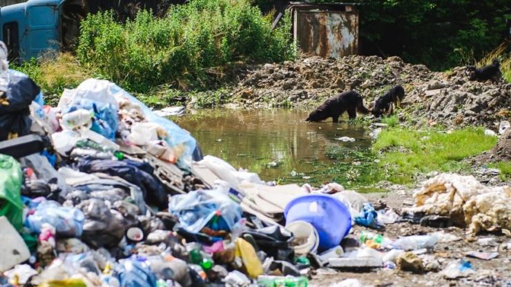 Верхвина сортує сміття