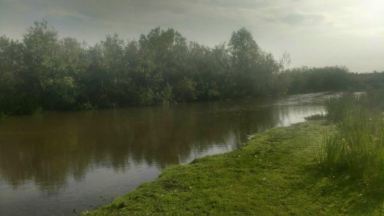 У річках Прикарпаття перевіряють воду на вміст небезпечних речовин 1