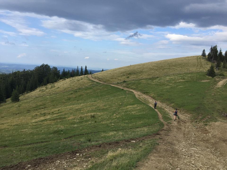 Активісти в Карпатах поновили популярні туристичні маршрути та проклали нові 8