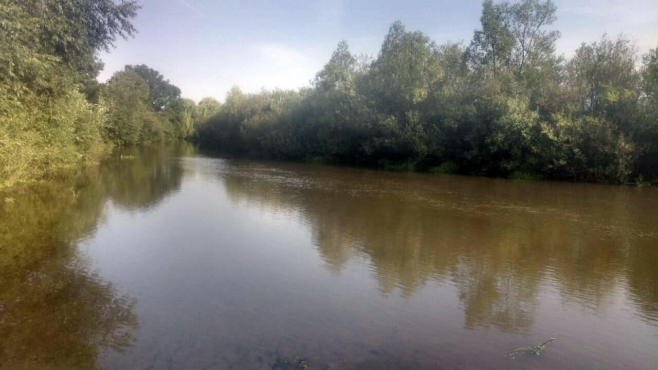 У річках Прикарпаття перевіряють воду на вміст небезпечних речовин 3