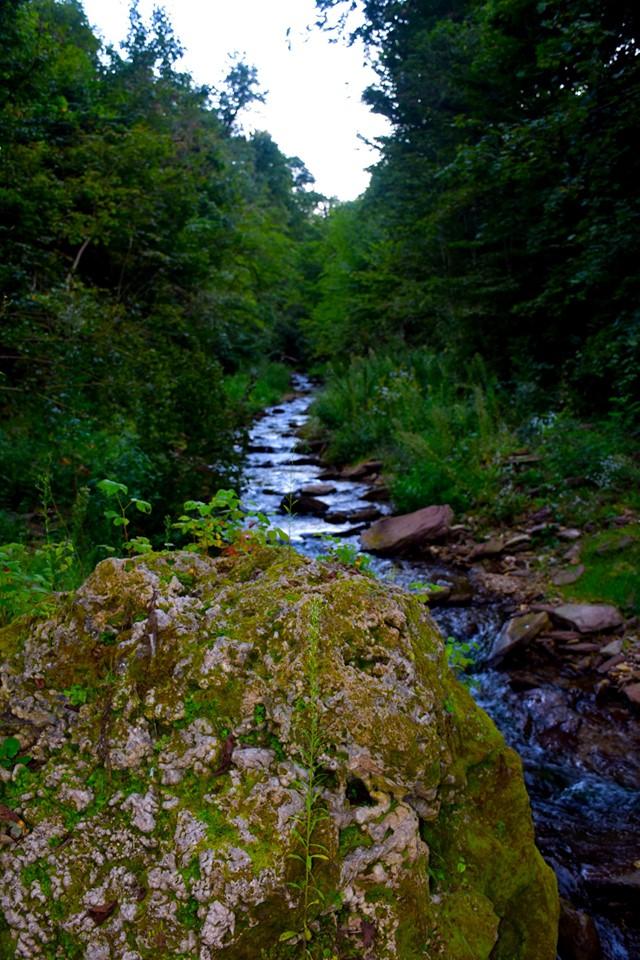 До Чернелицького замку: у Дністровському каньйоні прокладають новий маршрут 3