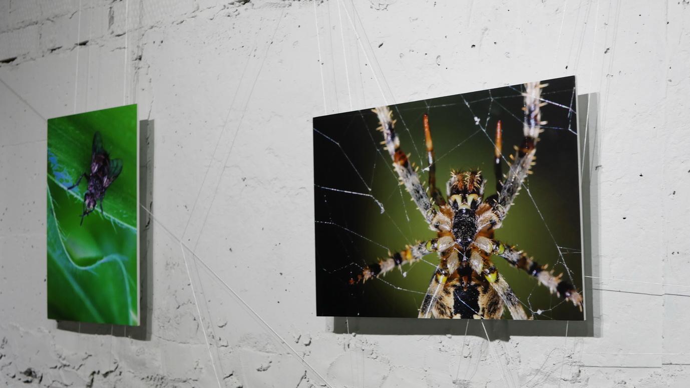 """У франківському """"Ваґабундо"""" відкрили фотовиставку Ростислава Шпука – діджей Юрій Іздрик 22"""