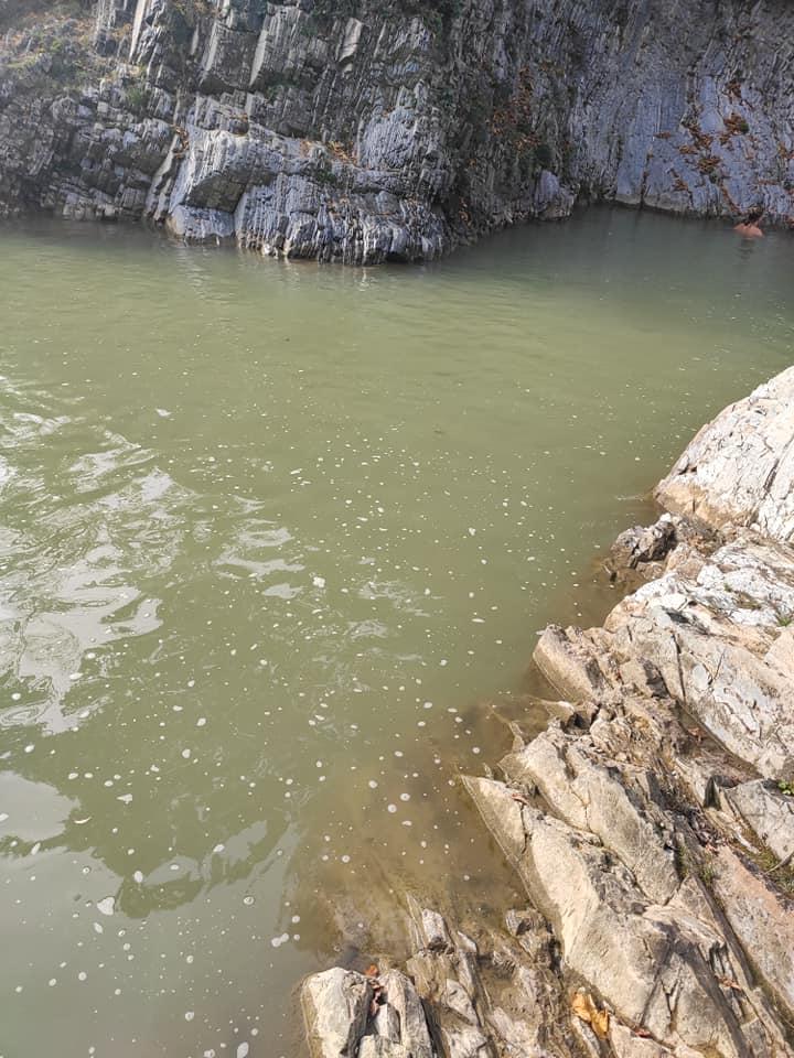 Річка Рибниця Косів