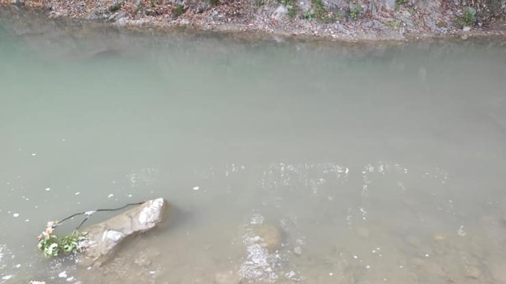 Рибниця Косів