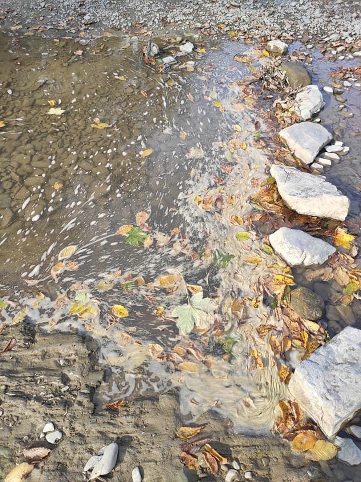 Косів річка Рибниця