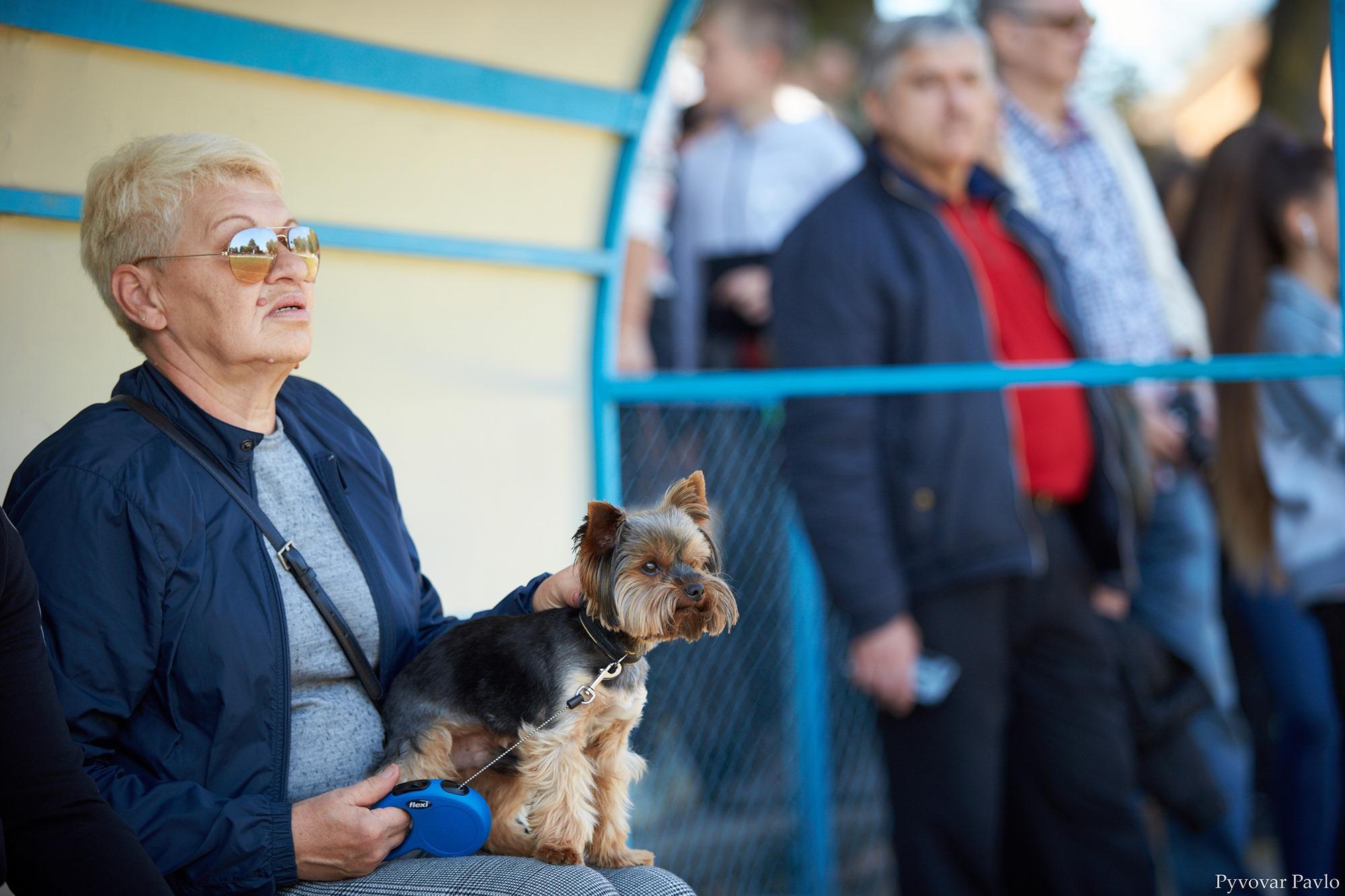 В Івано-Франківську 120 песиків взяли участь у виставці собак 30