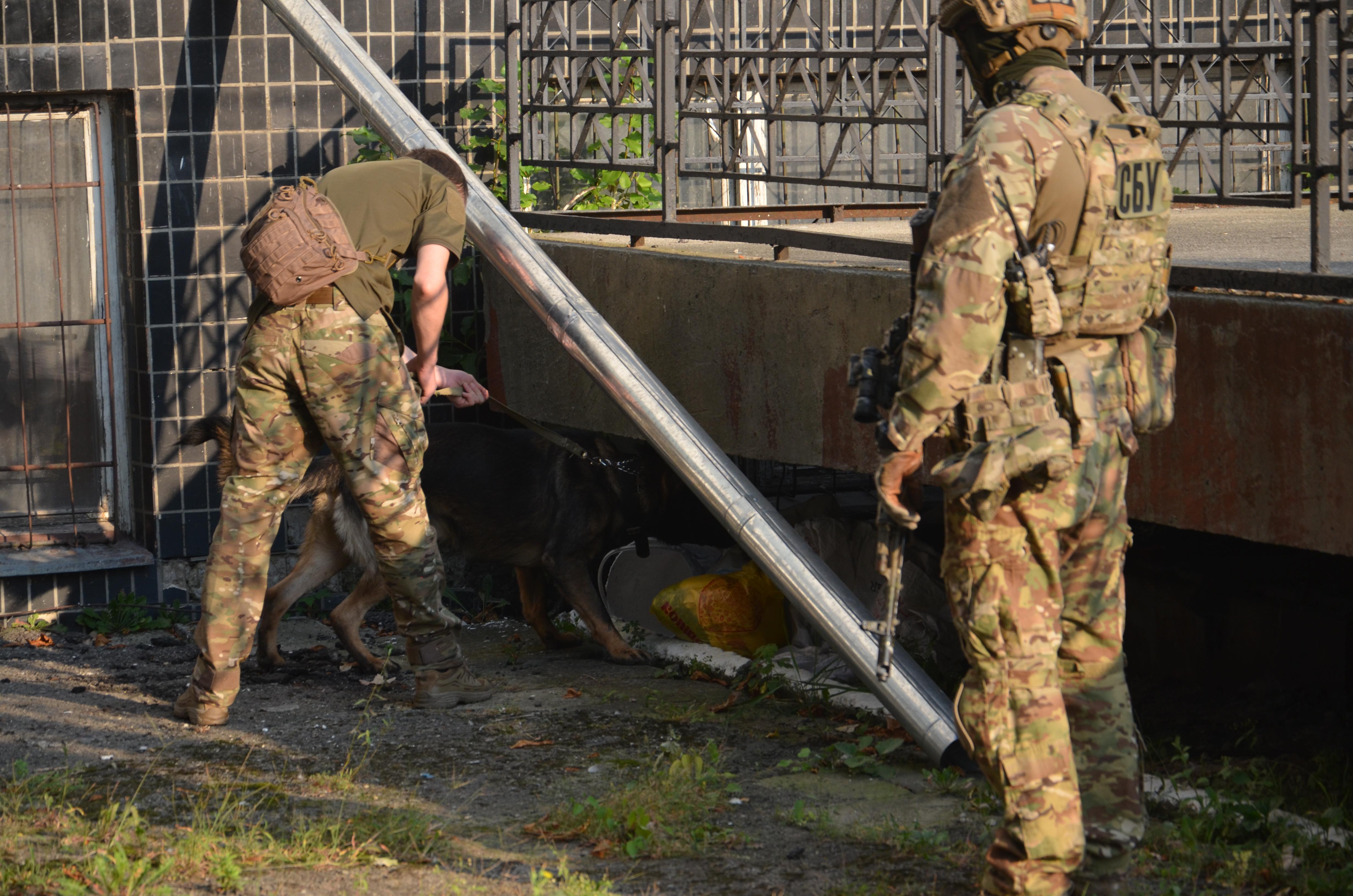 Перед святковими лінійками СБУ та поліція обстежили навчальні заклади у Франківську 2