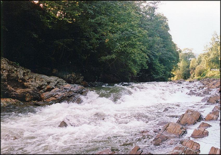 Річка Рибниця на Косівщині потерпає від забруднення стоками (фотофакт)