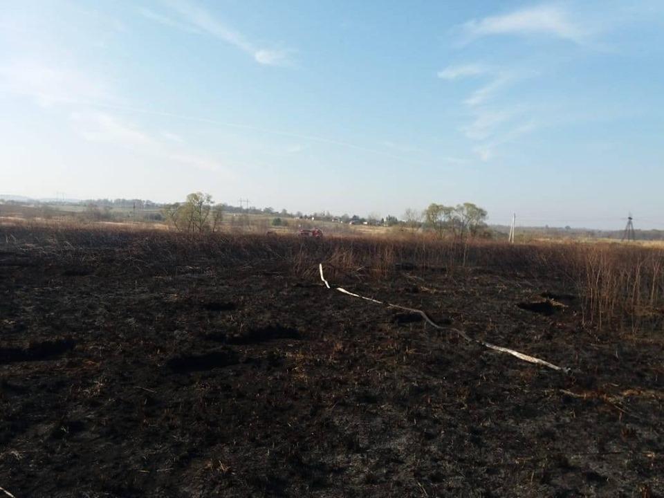 На Долинщині погасили пожежу на торфовищі 4