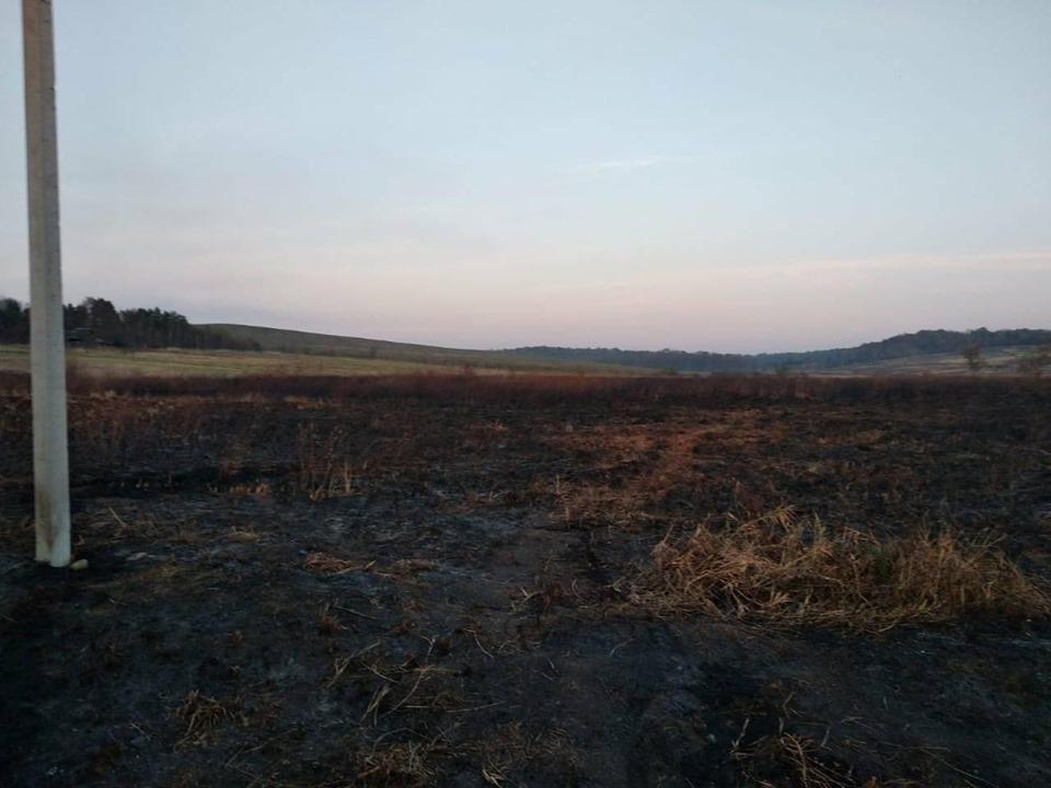 На Долинщині погасили пожежу на торфовищі 2