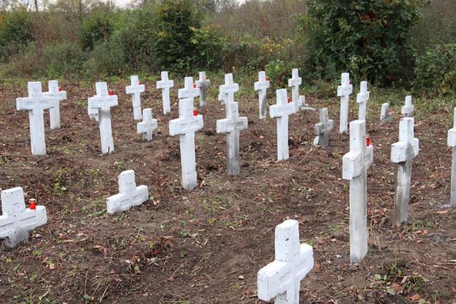На Прикарпатті волонтери впорядкували занедбане військове кладовище Першої світової війни 6