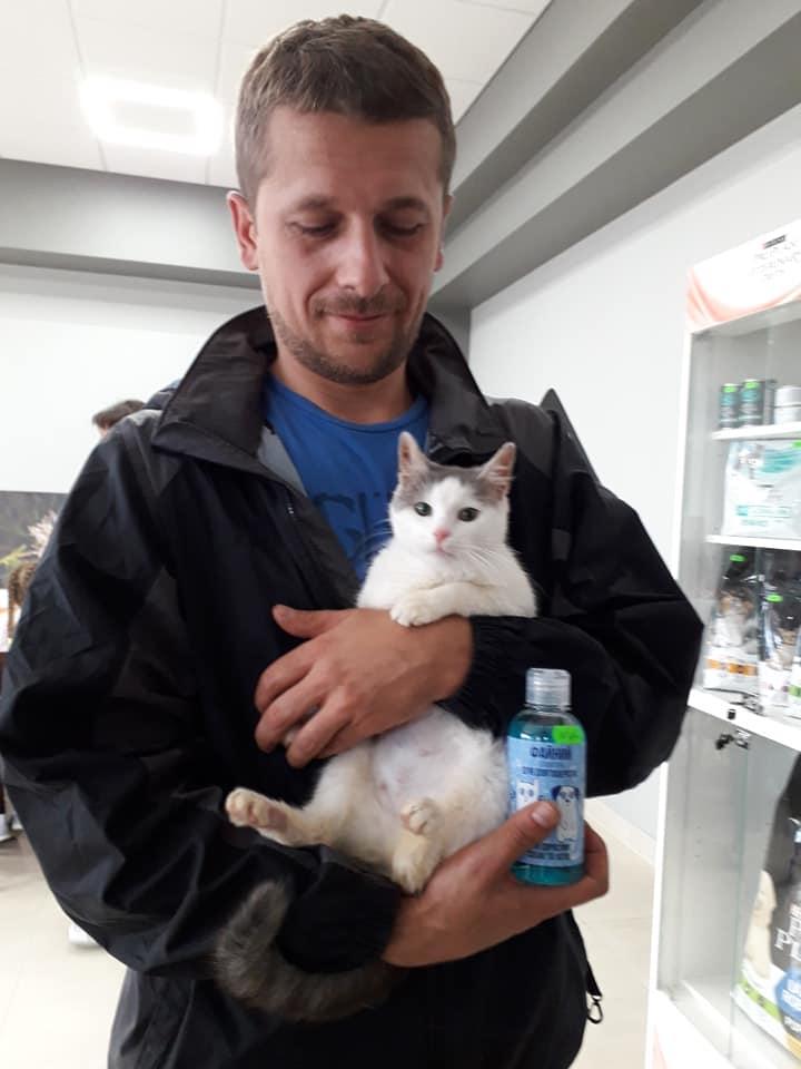 """За два місяці """"Дім Сірка"""" віддав в добрі руки понад 100 собак та котів 4"""