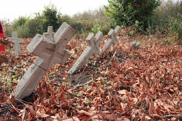 На Прикарпатті волонтери впорядкували занедбане військове кладовище Першої світової війни 10