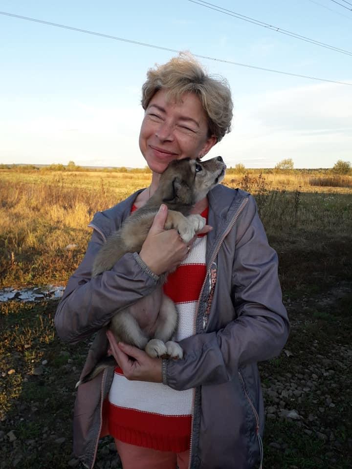 """За два місяці """"Дім Сірка"""" віддав в добрі руки понад 100 собак та котів 6"""