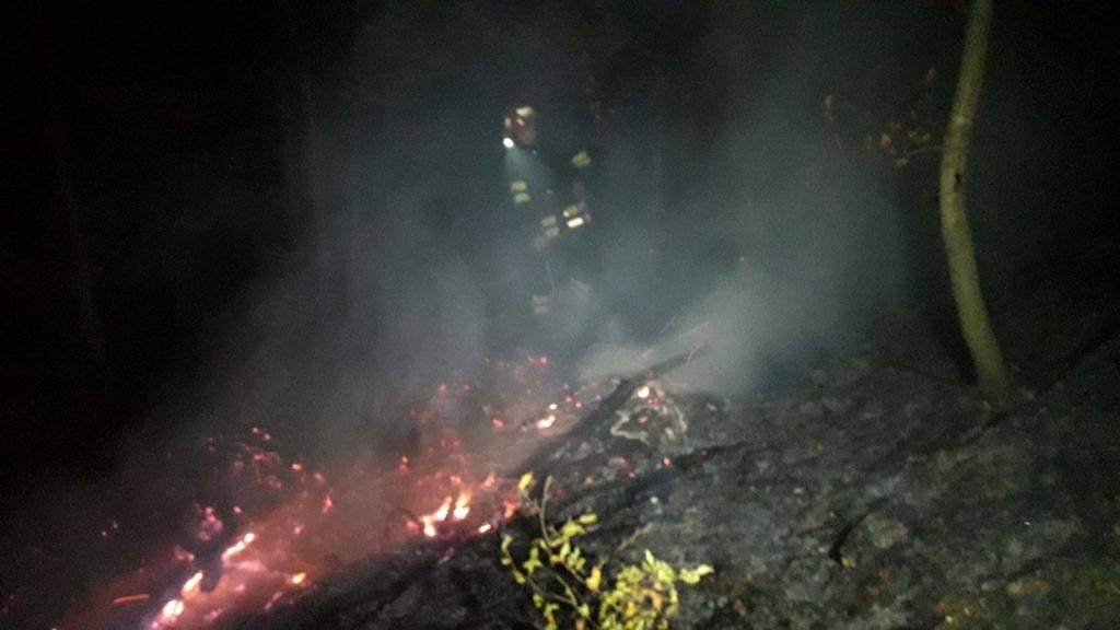 На Косівщині пожежники шість годин гасили пожежу сухої трави в лісі 1