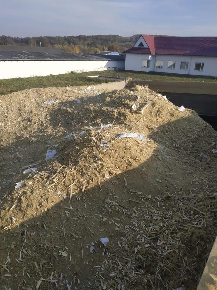 На Косівщині поліцейські знищили рекордну плантацію коноплі, яку виявили минулого місяця 4