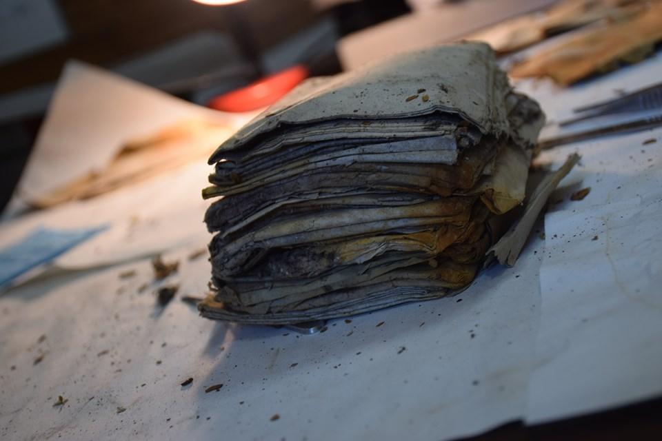 У лісах на Прикарпатті відкопали невідомі звіти УПА 6