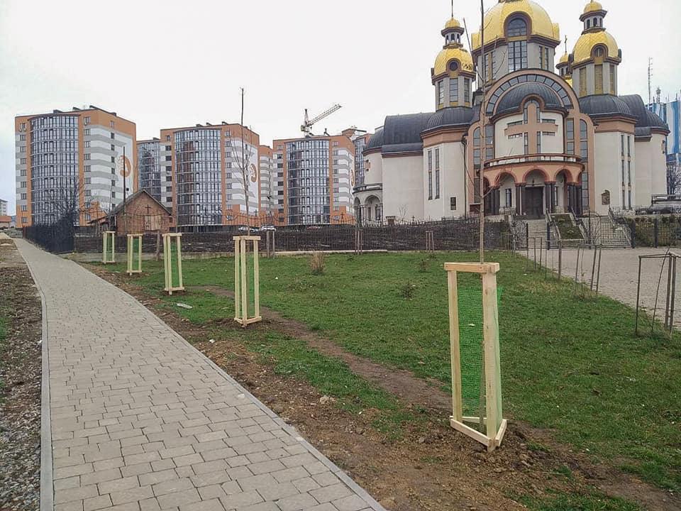 Восени у Франківську висадили 376 дерев та 2025 кущів 2
