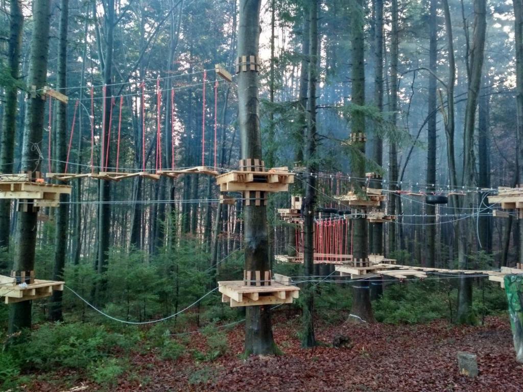 У лісгоспі на Франківщині встановили мотузковий парк для дітей 1