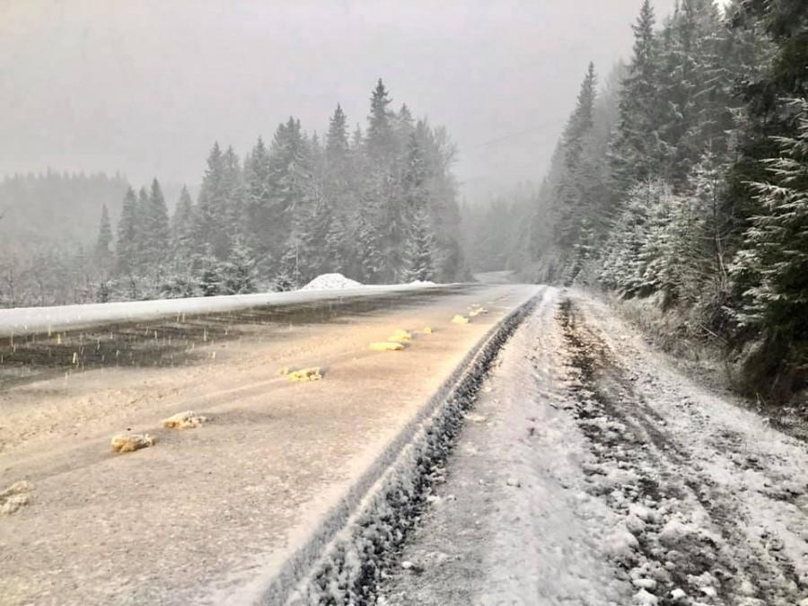 Карпати засипало снігом 2