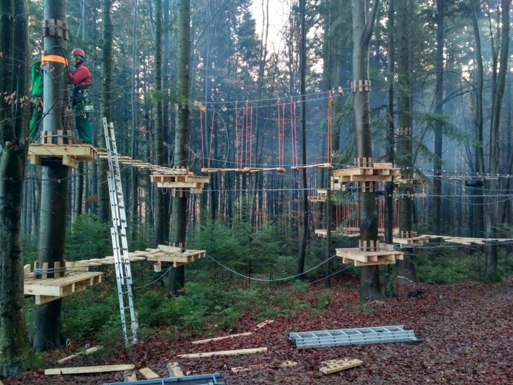 У лісгоспі на Франківщині встановили мотузковий парк для дітей 5