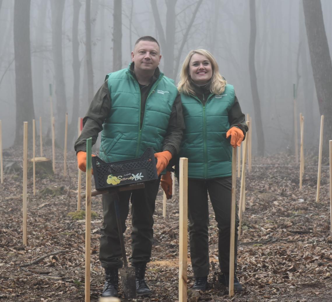 Поблизу Франківська висадили гектар лісу у вигляді вишиванки 4