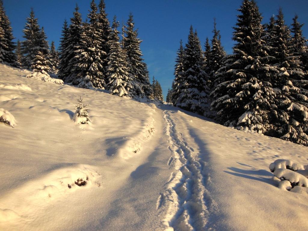 Франківець пішов у похід на милицях заради неймовірних фото зимових Карпат 4