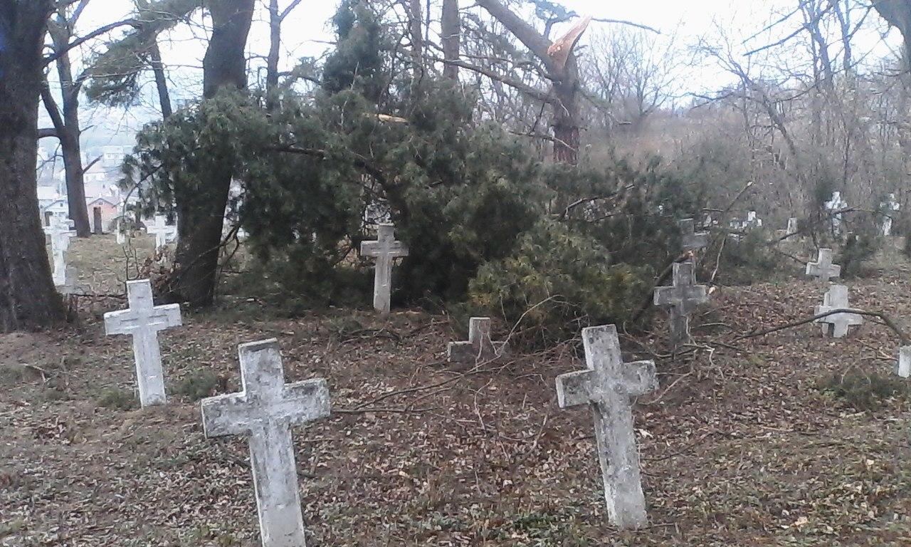 У Галичі впорядковують військове кладовище часів Першої світової 4