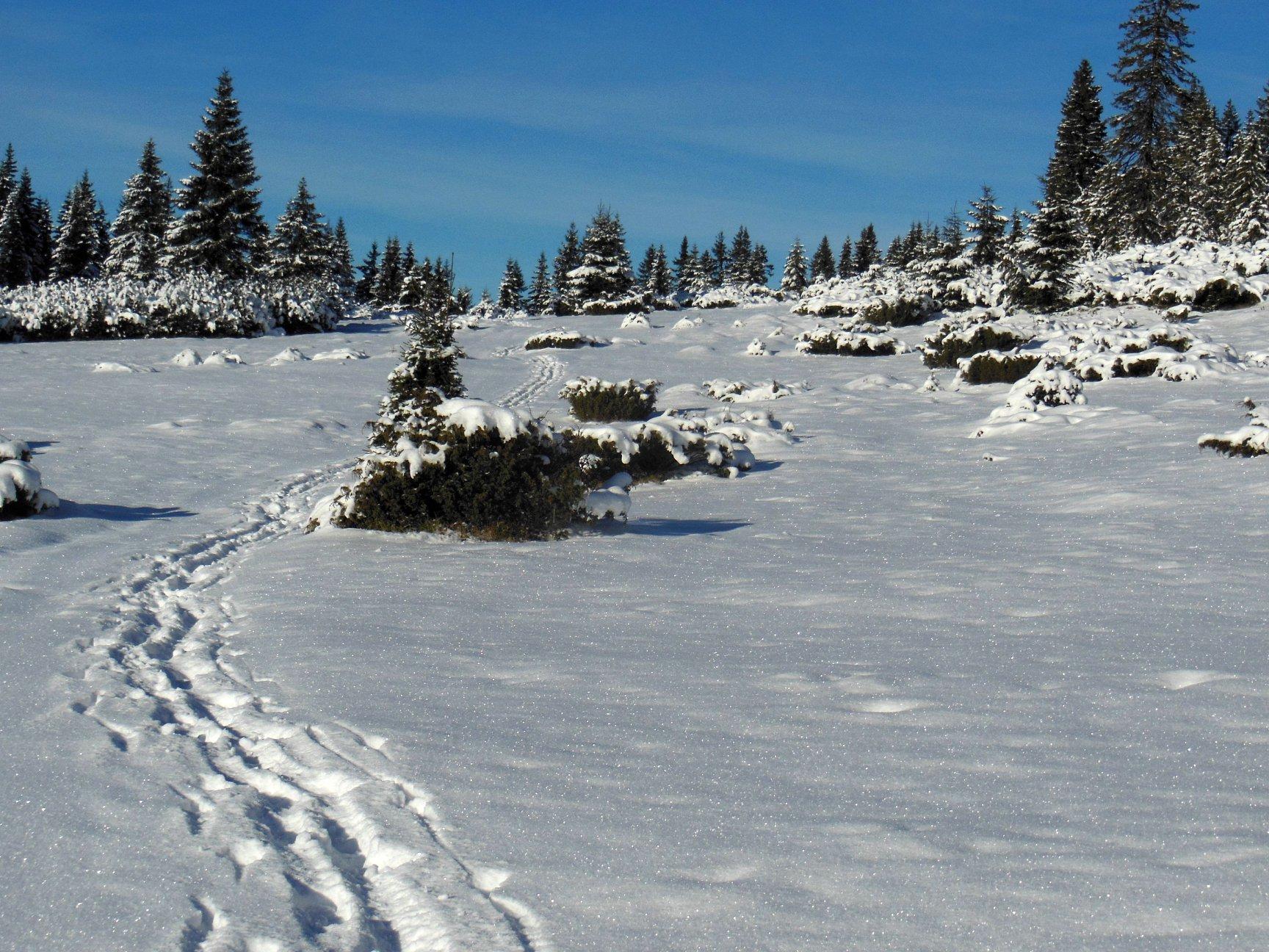 Франківець пішов у похід на милицях заради неймовірних фото зимових Карпат 24