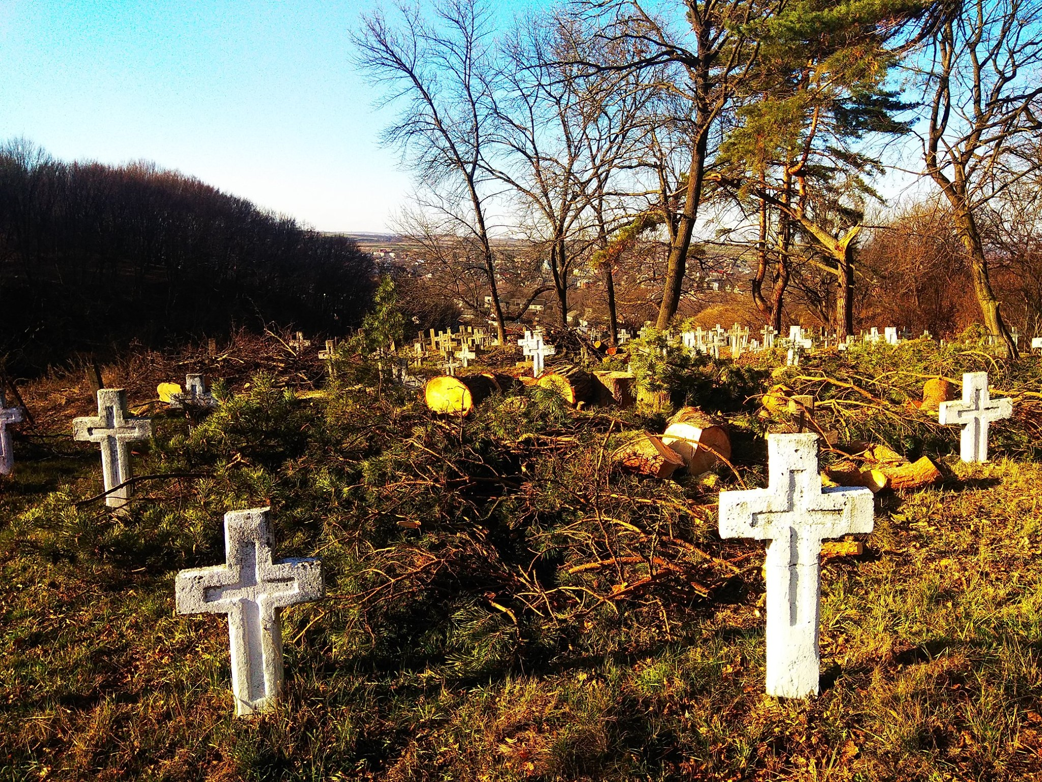 У Галичі впорядковують військове кладовище часів Першої світової 6
