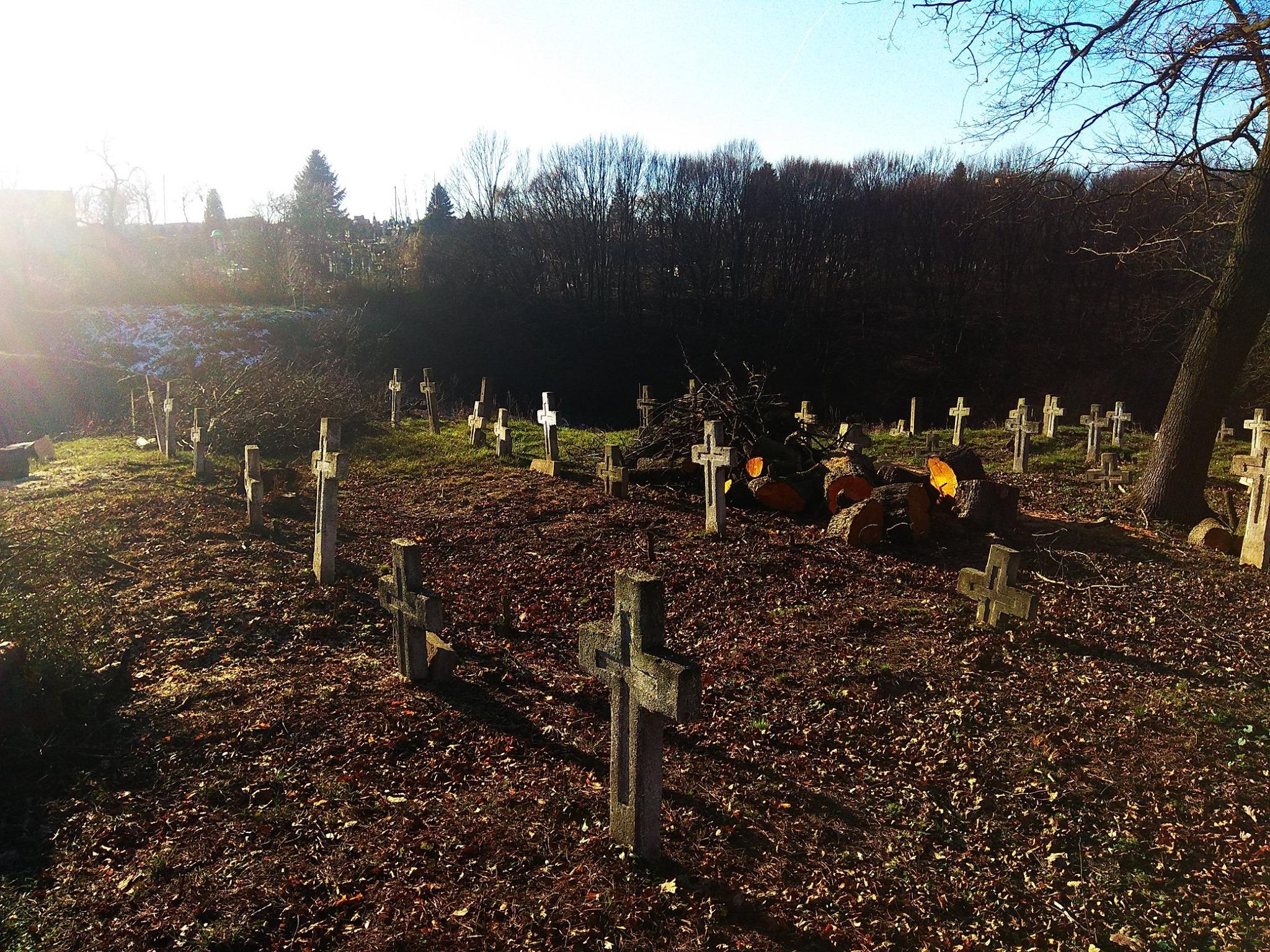 У Галичі впорядковують військове кладовище часів Першої світової 8