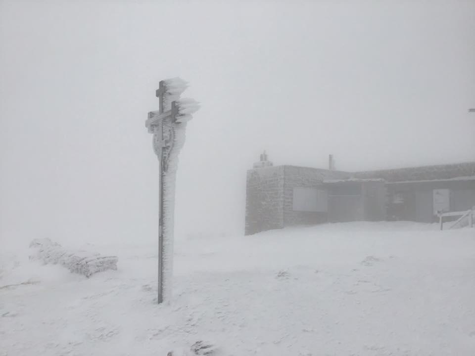 На Драгобраті й на Чорногорі вже намело снігу 8