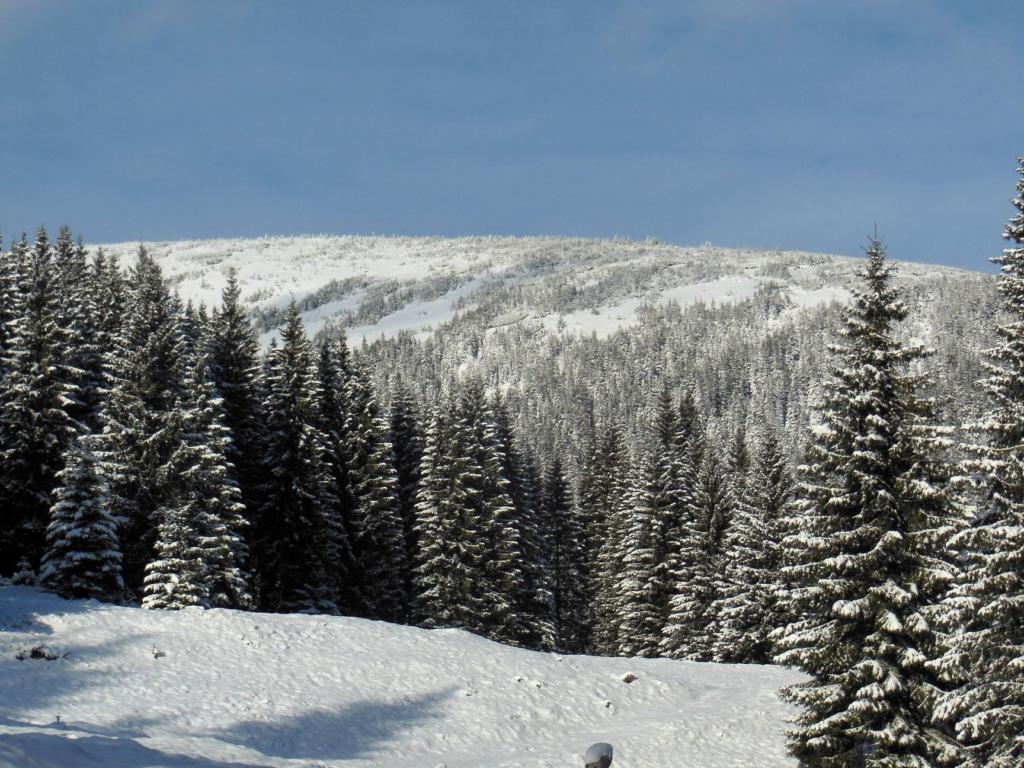 Франківець пішов у похід на милицях заради неймовірних фото зимових Карпат 6