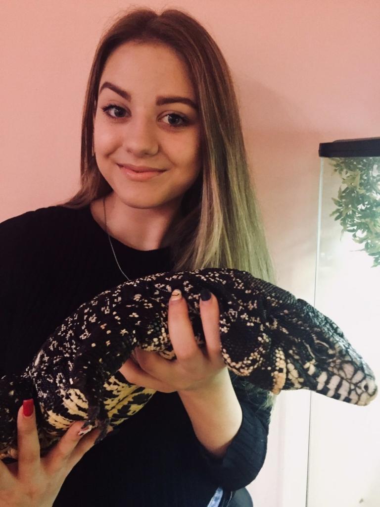 Родина франківців утримує вдома понад сотню змій, ящірок і крокодила 14