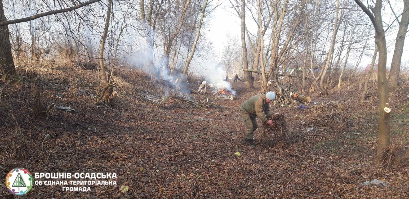 Мешканці прикарпатського села облагородили відпочинкову зону та назбирали дров для малозабезпечених сімей 6