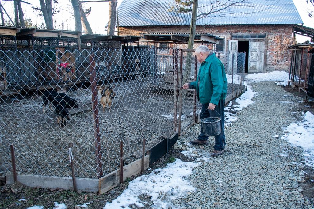 У Франківську запрацював перший комунальний пункт перетримки собак 10