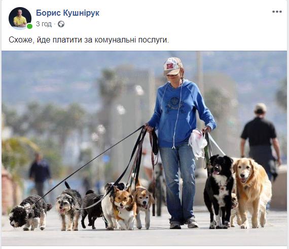 У соцмережах люто висміяли нардепа Брагара, який запропонував пенсіонерці розрахуватися за газ собакою 152