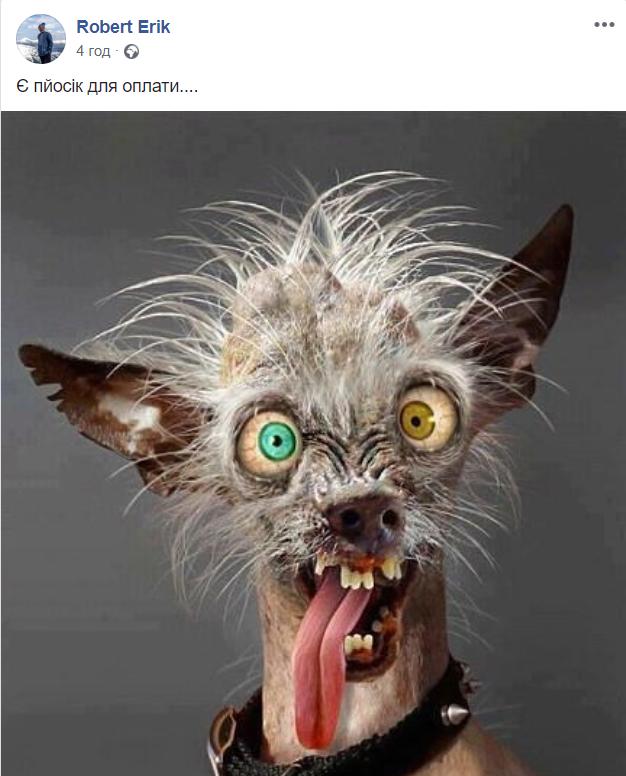 У соцмережах люто висміяли нардепа Брагара, який запропонував пенсіонерці розрахуватися за газ собакою 162