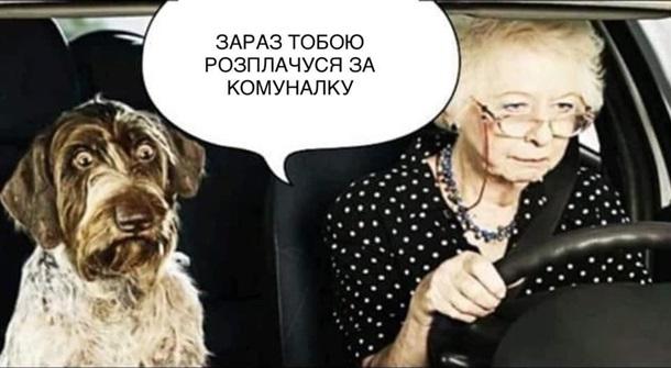 У соцмережах люто висміяли нардепа Брагара, який запропонував пенсіонерці розрахуватися за газ собакою 8