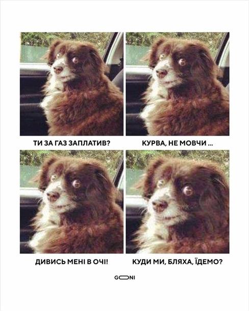 У соцмережах люто висміяли нардепа Брагара, який запропонував пенсіонерці розрахуватися за газ собакою 14