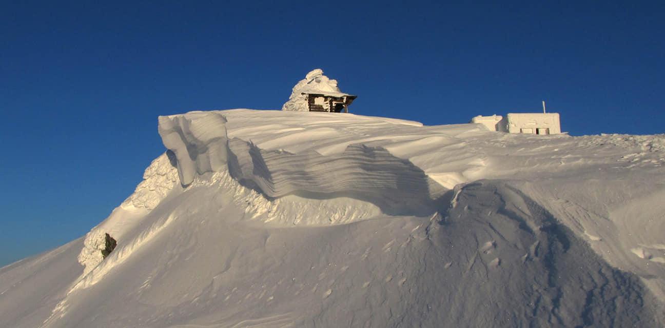 Зимова казка: прикарпатці діляться неймовірними фото та відео засніжених Карпат 28