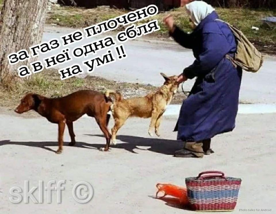 У соцмережах люто висміяли нардепа Брагара, який запропонував пенсіонерці розрахуватися за газ собакою 30
