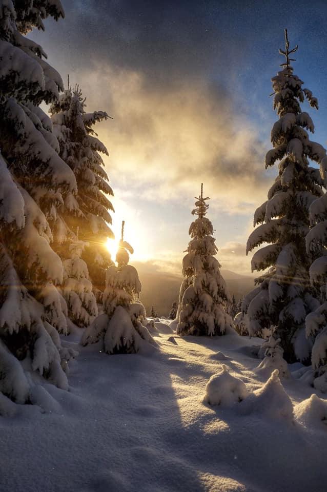Зимова казка: прикарпатці діляться неймовірними фото та відео засніжених Карпат 44