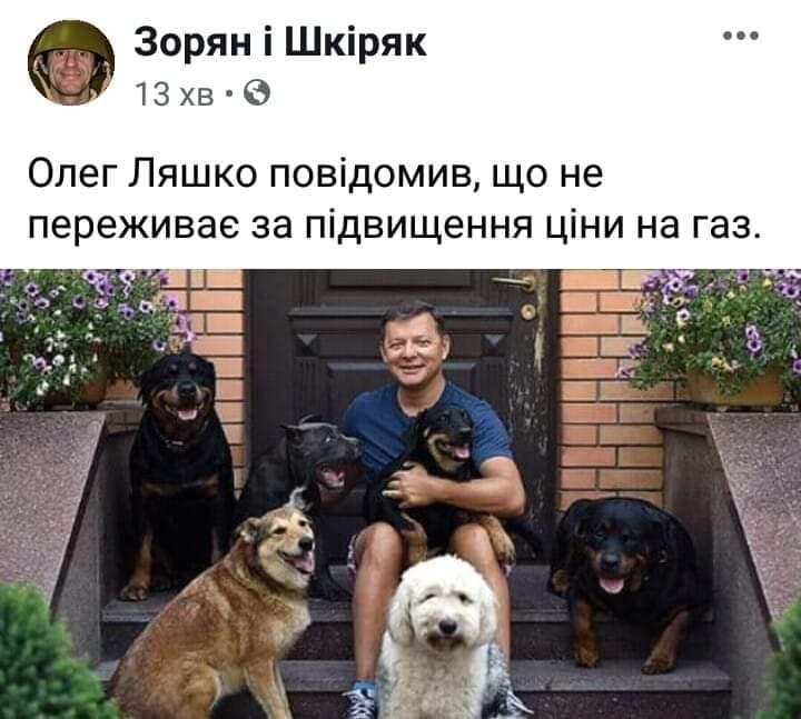 У соцмережах люто висміяли нардепа Брагара, який запропонував пенсіонерці розрахуватися за газ собакою 76