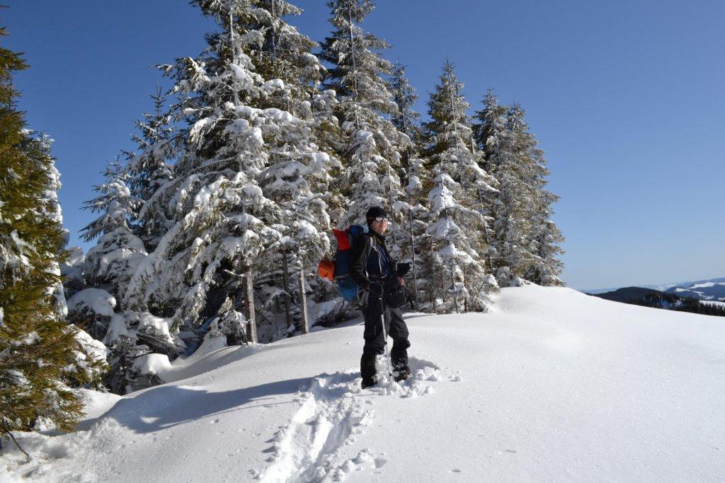 Зимова казка: прикарпатці діляться неймовірними фото та відео засніжених Карпат 4